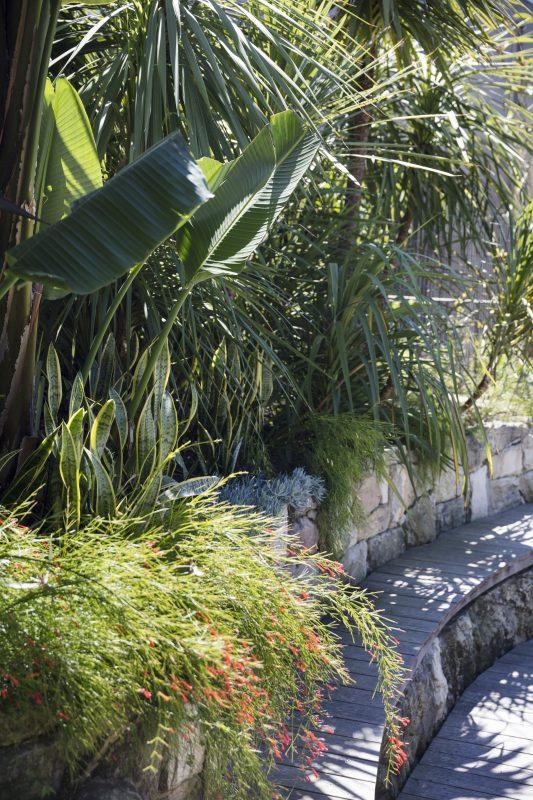 Wyer-Co_Beachside-Garden_Relaxed-Coastal-Plant-Palette