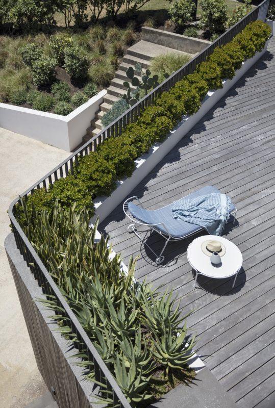 Wyer-Co_Beachside-Garden_Rooftop-Garden-Mass-Planted-Succulents