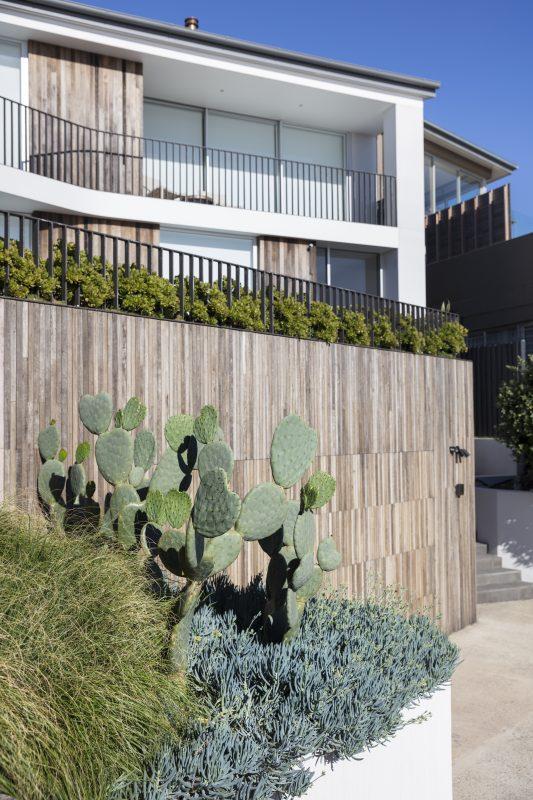 Wyer-Co_Beachside-Garden_Silver-Toned-Succulents-Sculptural-Forms