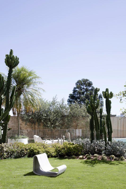 Palms-Spring-Inspired-Garden-Features-Cacti-Agaves-Succulents